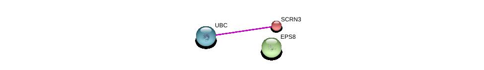 http://string-db.org/version_10/api/image/networkList?limit=0&targetmode=proteins&caller_identity=gene_cards&network_flavor=evidence&identifiers=9606.ENSP00000272732%0d%0a9606.ENSP00000344818%0d%0a9606.ENSP00000281172%0d%0a
