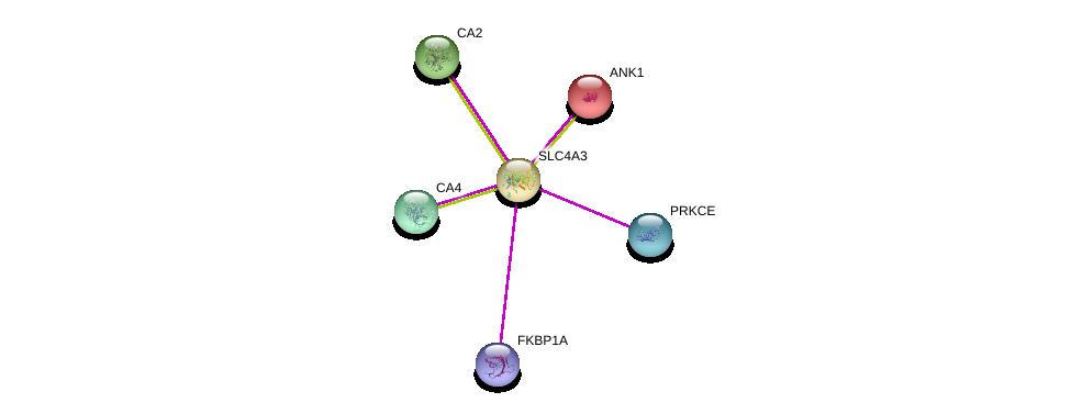 http://string-db.org/version_10/api/image/networkList?limit=0&targetmode=proteins&caller_identity=gene_cards&network_flavor=evidence&identifiers=9606.ENSP00000273063%0d%0a9606.ENSP00000306124%0d%0a9606.ENSP00000265709%0d%0a9606.ENSP00000300900%0d%0a9606.ENSP00000285379%0d%0a9606.ENSP00000371138%0d%0a