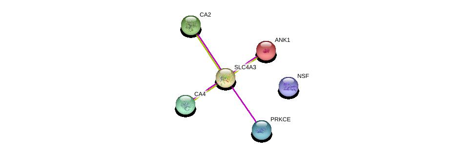 http://string-db.org/version_10/api/image/networkList?limit=0&targetmode=proteins&caller_identity=gene_cards&network_flavor=evidence&identifiers=9606.ENSP00000273063%0d%0a9606.ENSP00000381293%0d%0a9606.ENSP00000300900%0d%0a9606.ENSP00000285379%0d%0a9606.ENSP00000306124%0d%0a9606.ENSP00000265709%0d%0a