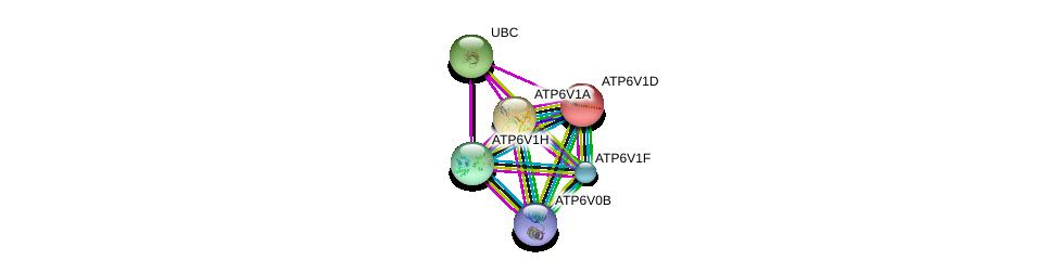 http://string-db.org/version_10/api/image/networkList?limit=0&targetmode=proteins&caller_identity=gene_cards&network_flavor=evidence&identifiers=9606.ENSP00000273398%0d%0a9606.ENSP00000344818%0d%0a9606.ENSP00000417378%0d%0a9606.ENSP00000352522%0d%0a9606.ENSP00000216442%0d%0a9606.ENSP00000431605%0d%0a