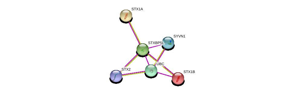 http://string-db.org/version_10/api/image/networkList?limit=0&targetmode=proteins&caller_identity=gene_cards&network_flavor=evidence&identifiers=9606.ENSP00000273666%0d%0a9606.ENSP00000366395%0d%0a9606.ENSP00000344818%0d%0a9606.ENSP00000376178%0d%0a9606.ENSP00000222812%0d%0a9606.ENSP00000215095%0d%0a