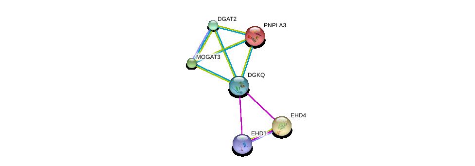 http://string-db.org/version_10/api/image/networkList?limit=0&targetmode=proteins&caller_identity=gene_cards&network_flavor=evidence&identifiers=9606.ENSP00000273814%0d%0a9606.ENSP00000220325%0d%0a9606.ENSP00000320516%0d%0a9606.ENSP00000216180%0d%0a9606.ENSP00000223114%0d%0a9606.ENSP00000228027%0d%0a