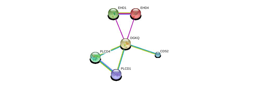 http://string-db.org/version_10/api/image/networkList?limit=0&targetmode=proteins&caller_identity=gene_cards&network_flavor=evidence&identifiers=9606.ENSP00000273814%0d%0a9606.ENSP00000220325%0d%0a9606.ENSP00000320516%0d%0a9606.ENSP00000430344%0d%0a9606.ENSP00000419879%0d%0a9606.ENSP00000388631%0d%0a