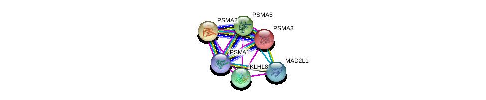 http://string-db.org/version_10/api/image/networkList?limit=0&targetmode=proteins&caller_identity=gene_cards&network_flavor=evidence&identifiers=9606.ENSP00000273963%0d%0a9606.ENSP00000414359%0d%0a9606.ENSP00000216455%0d%0a9606.ENSP00000296509%0d%0a9606.ENSP00000271308%0d%0a9606.ENSP00000223321%0d%0a