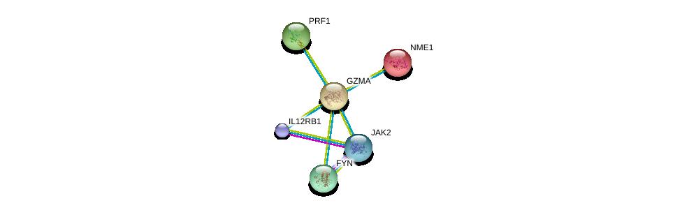 http://string-db.org/version_10/api/image/networkList?limit=0&targetmode=proteins&caller_identity=gene_cards&network_flavor=evidence&identifiers=9606.ENSP00000274306%0d%0a9606.ENSP00000013034%0d%0a9606.ENSP00000316746%0d%0a9606.ENSP00000403103%0d%0a9606.ENSP00000371067%0d%0a9606.ENSP00000346671%0d%0a