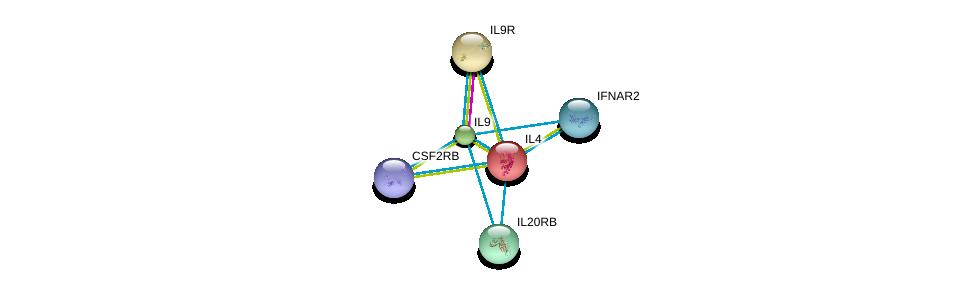 http://string-db.org/version_10/api/image/networkList?limit=0&targetmode=proteins&caller_identity=gene_cards&network_flavor=evidence&identifiers=9606.ENSP00000274520%0d%0a9606.ENSP00000244174%0d%0a9606.ENSP00000384053%0d%0a9606.ENSP00000231449%0d%0a9606.ENSP00000328133%0d%0a9606.ENSP00000343957%0d%0a