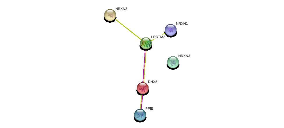 http://string-db.org/version_10/api/image/networkList?limit=0&targetmode=proteins&caller_identity=gene_cards&network_flavor=evidence&identifiers=9606.ENSP00000274711%0d%0a9606.ENSP00000265459%0d%0a9606.ENSP00000385142%0d%0a9606.ENSP00000338349%0d%0a9606.ENSP00000361918%0d%0a9606.ENSP00000262415%0d%0a