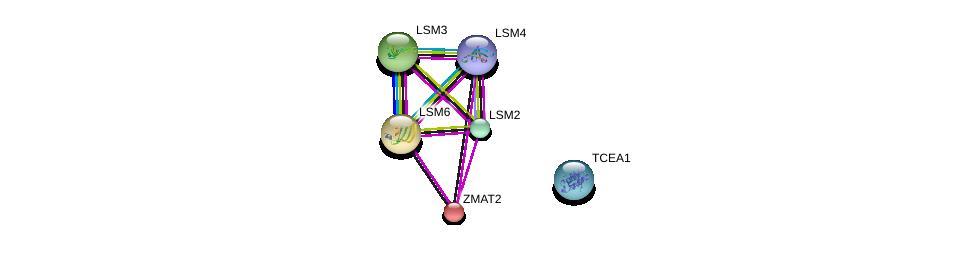 http://string-db.org/version_10/api/image/networkList?limit=0&targetmode=proteins&caller_identity=gene_cards&network_flavor=evidence&identifiers=9606.ENSP00000274712%0d%0a9606.ENSP00000296581%0d%0a9606.ENSP00000364813%0d%0a9606.ENSP00000469468%0d%0a9606.ENSP00000302160%0d%0a9606.ENSP00000428426%0d%0a