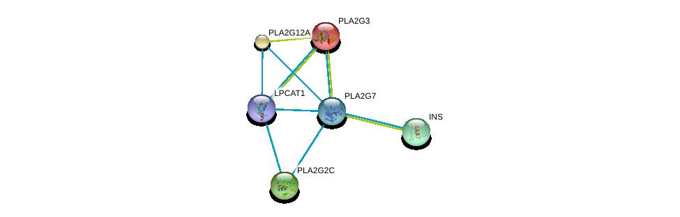 http://string-db.org/version_10/api/image/networkList?limit=0&targetmode=proteins&caller_identity=gene_cards&network_flavor=evidence&identifiers=9606.ENSP00000274793%0d%0a9606.ENSP00000215885%0d%0a9606.ENSP00000243501%0d%0a9606.ENSP00000247992%0d%0a9606.ENSP00000250971%0d%0a9606.ENSP00000283415%0d%0a