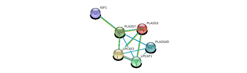 http://string-db.org/version_10/api/image/networkList?limit=0&targetmode=proteins&caller_identity=gene_cards&network_flavor=evidence&identifiers=9606.ENSP00000274793%0d%0a9606.ENSP00000215885%0d%0a9606.ENSP00000262134%0d%0a9606.ENSP00000283415%0d%0a9606.ENSP00000290472%0d%0a9606.ENSP00000302665%0d%0a