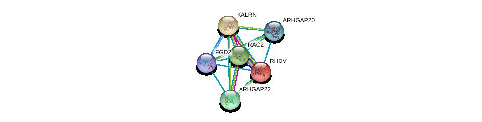 http://string-db.org/version_10/api/image/networkList?limit=0&targetmode=proteins&caller_identity=gene_cards&network_flavor=evidence&identifiers=9606.ENSP00000274963%0d%0a9606.ENSP00000220507%0d%0a9606.ENSP00000240874%0d%0a9606.ENSP00000249071%0d%0a9606.ENSP00000249601%0d%0a9606.ENSP00000260283%0d%0a