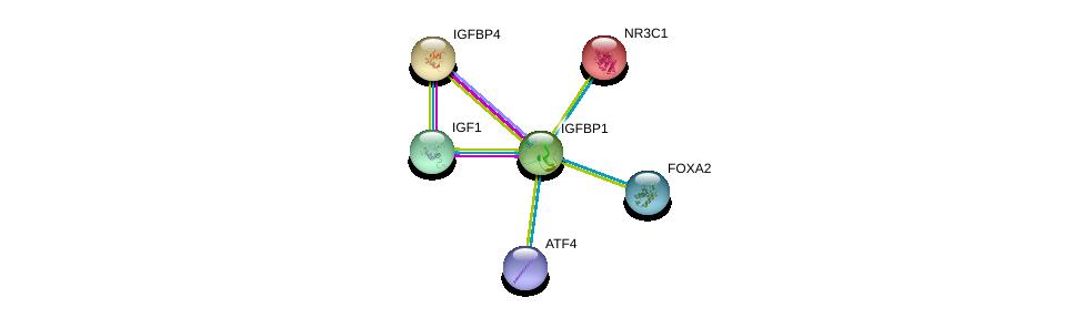 http://string-db.org/version_10/api/image/networkList?limit=0&targetmode=proteins&caller_identity=gene_cards&network_flavor=evidence&identifiers=9606.ENSP00000275525%0d%0a9606.ENSP00000302665%0d%0a9606.ENSP00000269593%0d%0a9606.ENSP00000231509%0d%0a9606.ENSP00000336790%0d%0a9606.ENSP00000315955%0d%0a