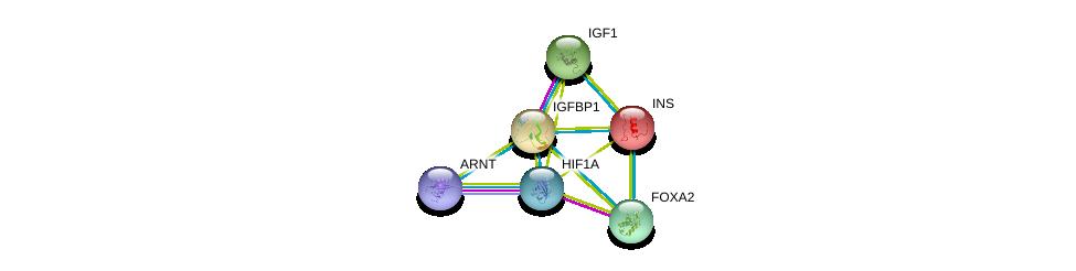 http://string-db.org/version_10/api/image/networkList?limit=0&targetmode=proteins&caller_identity=gene_cards&network_flavor=evidence&identifiers=9606.ENSP00000275525%0d%0a9606.ENSP00000302665%0d%0a9606.ENSP00000351407%0d%0a9606.ENSP00000338018%0d%0a9606.ENSP00000250971%0d%0a9606.ENSP00000315955%0d%0a