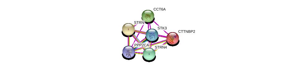 http://string-db.org/version_10/api/image/networkList?limit=0&targetmode=proteins&caller_identity=gene_cards&network_flavor=evidence&identifiers=9606.ENSP00000275603%0d%0a9606.ENSP00000375777%0d%0a9606.ENSP00000390500%0d%0a9606.ENSP00000263918%0d%0a9606.ENSP00000160373%0d%0a9606.ENSP00000418447%0d%0a