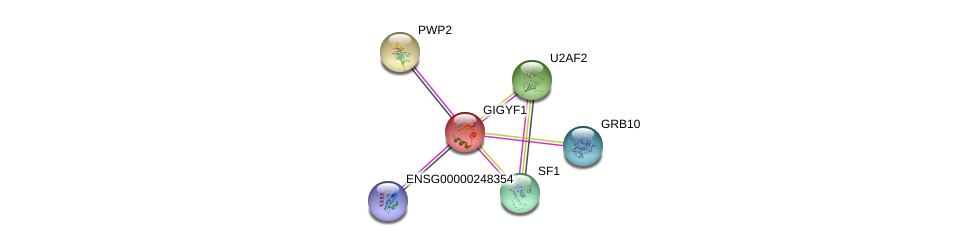 http://string-db.org/version_10/api/image/networkList?limit=0&targetmode=proteins&caller_identity=gene_cards&network_flavor=evidence&identifiers=9606.ENSP00000275732%0d%0a9606.ENSP00000381793%0d%0a9606.ENSP00000366604%0d%0a9606.ENSP00000291576%0d%0a9606.ENSP00000307863%0d%0a9606.ENSP00000415634%0d%0a