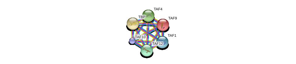 http://string-db.org/version_10/api/image/networkList?limit=0&targetmode=proteins&caller_identity=gene_cards&network_flavor=evidence&identifiers=9606.ENSP00000276072%0d%0a9606.ENSP00000230354%0d%0a9606.ENSP00000217893%0d%0a9606.ENSP00000252996%0d%0a9606.ENSP00000263974%0d%0a9606.ENSP00000299424%0d%0a