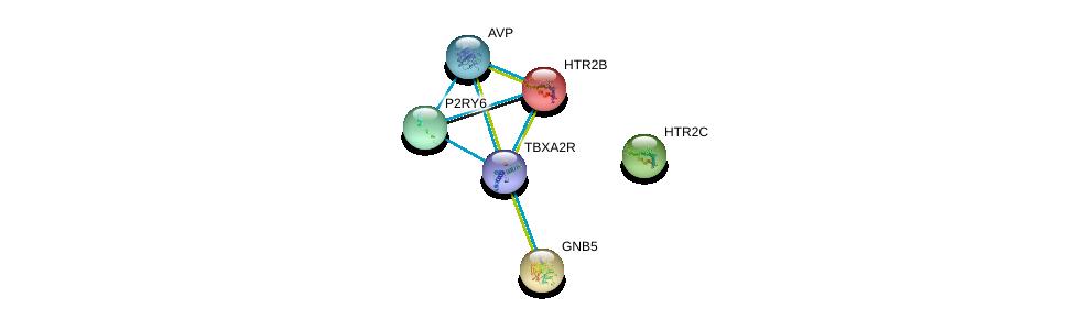 http://string-db.org/version_10/api/image/networkList?limit=0&targetmode=proteins&caller_identity=gene_cards&network_flavor=evidence&identifiers=9606.ENSP00000276198%0d%0a9606.ENSP00000258400%0d%0a9606.ENSP00000309771%0d%0a9606.ENSP00000369647%0d%0a9606.ENSP00000261837%0d%0a9606.ENSP00000393333%0d%0a