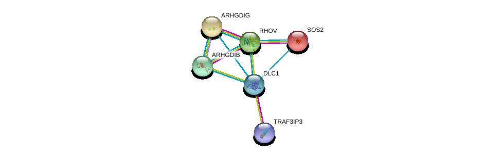 http://string-db.org/version_10/api/image/networkList?limit=0&targetmode=proteins&caller_identity=gene_cards&network_flavor=evidence&identifiers=9606.ENSP00000276297%0d%0a9606.ENSP00000355991%0d%0a9606.ENSP00000216373%0d%0a9606.ENSP00000219409%0d%0a9606.ENSP00000220507%0d%0a9606.ENSP00000228945%0d%0a