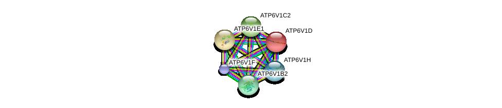 http://string-db.org/version_10/api/image/networkList?limit=0&targetmode=proteins&caller_identity=gene_cards&network_flavor=evidence&identifiers=9606.ENSP00000276390%0d%0a9606.ENSP00000352522%0d%0a9606.ENSP00000216442%0d%0a9606.ENSP00000417378%0d%0a9606.ENSP00000253413%0d%0a9606.ENSP00000272238%0d%0a