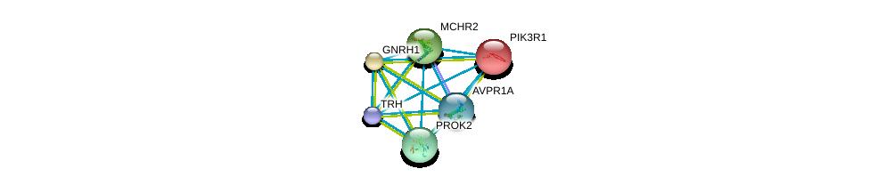 http://string-db.org/version_10/api/image/networkList?limit=0&targetmode=proteins&caller_identity=gene_cards&network_flavor=evidence&identifiers=9606.ENSP00000276414%0d%0a9606.ENSP00000299178%0d%0a9606.ENSP00000295619%0d%0a9606.ENSP00000281806%0d%0a9606.ENSP00000274335%0d%0a9606.ENSP00000303452%0d%0a