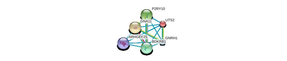 http://string-db.org/version_10/api/image/networkList?limit=0&targetmode=proteins&caller_identity=gene_cards&network_flavor=evidence&identifiers=9606.ENSP00000276414%0d%0a9606.ENSP00000335560%0d%0a9606.ENSP00000054668%0d%0a9606.ENSP00000078429%0d%0a9606.ENSP00000171757%0d%0a9606.ENSP00000216629%0d%0a