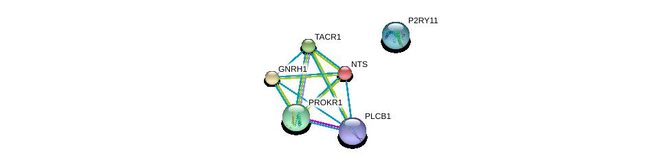 http://string-db.org/version_10/api/image/networkList?limit=0&targetmode=proteins&caller_identity=gene_cards&network_flavor=evidence&identifiers=9606.ENSP00000276414%0d%0a9606.ENSP00000338185%0d%0a9606.ENSP00000323872%0d%0a9606.ENSP00000303775%0d%0a9606.ENSP00000303522%0d%0a9606.ENSP00000256010%0d%0a