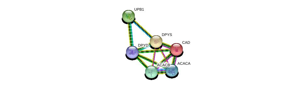 http://string-db.org/version_10/api/image/networkList?limit=0&targetmode=proteins&caller_identity=gene_cards&network_flavor=evidence&identifiers=9606.ENSP00000276651%0d%0a9606.ENSP00000324343%0d%0a9606.ENSP00000359211%0d%0a9606.ENSP00000264705%0d%0a9606.ENSP00000341044%0d%0a9606.ENSP00000344789%0d%0a