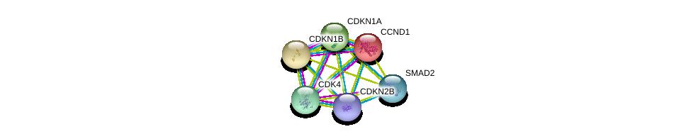 http://string-db.org/version_10/api/image/networkList?limit=0&targetmode=proteins&caller_identity=gene_cards&network_flavor=evidence&identifiers=9606.ENSP00000276925%0d%0a9606.ENSP00000257904%0d%0a9606.ENSP00000228872%0d%0a9606.ENSP00000244741%0d%0a9606.ENSP00000262160%0d%0a9606.ENSP00000227507%0d%0a