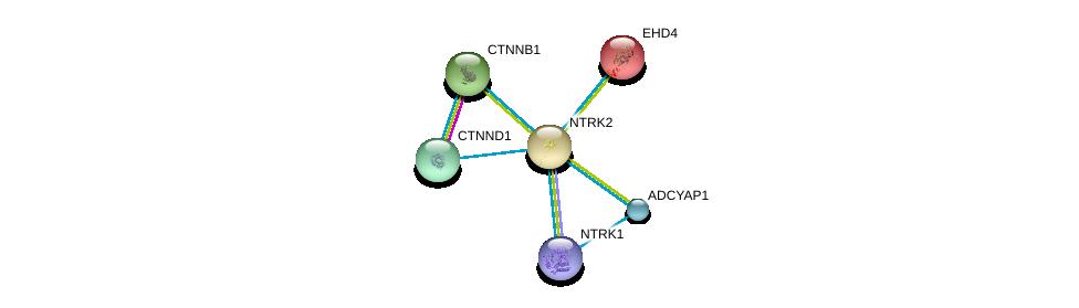 http://string-db.org/version_10/api/image/networkList?limit=0&targetmode=proteins&caller_identity=gene_cards&network_flavor=evidence&identifiers=9606.ENSP00000277120%0d%0a9606.ENSP00000382004%0d%0a9606.ENSP00000220325%0d%0a9606.ENSP00000411658%0d%0a9606.ENSP00000431418%0d%0a9606.ENSP00000344456%0d%0a