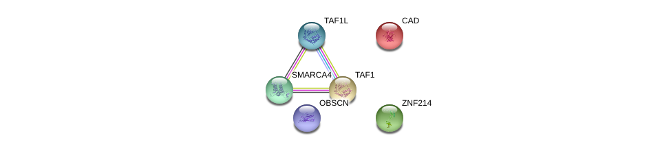 http://string-db.org/version_10/api/image/networkList?limit=0&targetmode=proteins&caller_identity=gene_cards&network_flavor=evidence&identifiers=9606.ENSP00000278314%0d%0a9606.ENSP00000264705%0d%0a9606.ENSP00000455507%0d%0a9606.ENSP00000418379%0d%0a9606.ENSP00000276072%0d%0a9606.ENSP00000350720%0d%0a