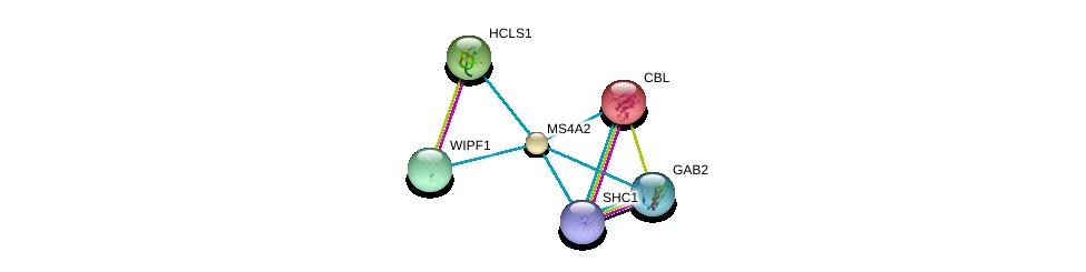 http://string-db.org/version_10/api/image/networkList?limit=0&targetmode=proteins&caller_identity=gene_cards&network_flavor=evidence&identifiers=9606.ENSP00000278888%0d%0a9606.ENSP00000264033%0d%0a9606.ENSP00000352802%0d%0a9606.ENSP00000401303%0d%0a9606.ENSP00000354952%0d%0a9606.ENSP00000320176%0d%0a