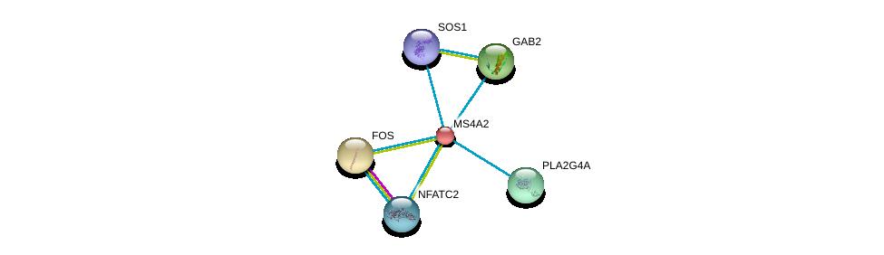 http://string-db.org/version_10/api/image/networkList?limit=0&targetmode=proteins&caller_identity=gene_cards&network_flavor=evidence&identifiers=9606.ENSP00000278888%0d%0a9606.ENSP00000356436%0d%0a9606.ENSP00000306245%0d%0a9606.ENSP00000354952%0d%0a9606.ENSP00000384675%0d%0a9606.ENSP00000379330%0d%0a