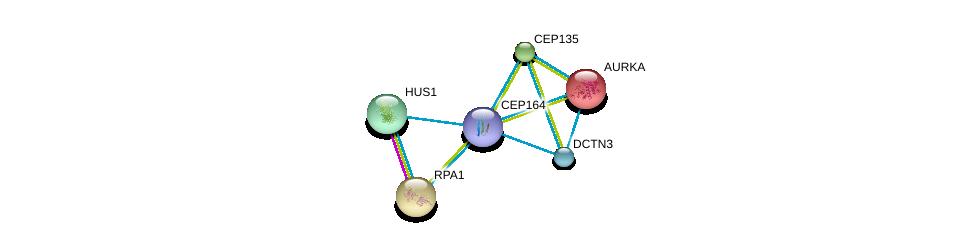 http://string-db.org/version_10/api/image/networkList?limit=0&targetmode=proteins&caller_identity=gene_cards&network_flavor=evidence&identifiers=9606.ENSP00000278935%0d%0a9606.ENSP00000216911%0d%0a9606.ENSP00000254719%0d%0a9606.ENSP00000257287%0d%0a9606.ENSP00000258774%0d%0a9606.ENSP00000259632%0d%0a