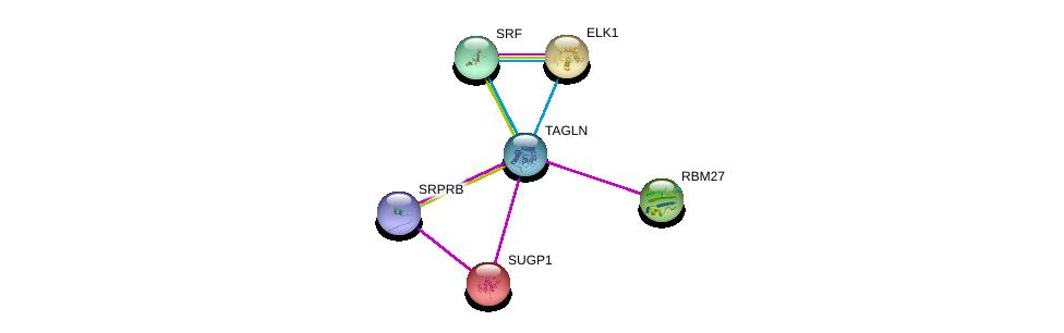 http://string-db.org/version_10/api/image/networkList?limit=0&targetmode=proteins&caller_identity=gene_cards&network_flavor=evidence&identifiers=9606.ENSP00000278968%0d%0a9606.ENSP00000265271%0d%0a9606.ENSP00000247001%0d%0a9606.ENSP00000418401%0d%0a9606.ENSP00000247161%0d%0a9606.ENSP00000265354%0d%0a