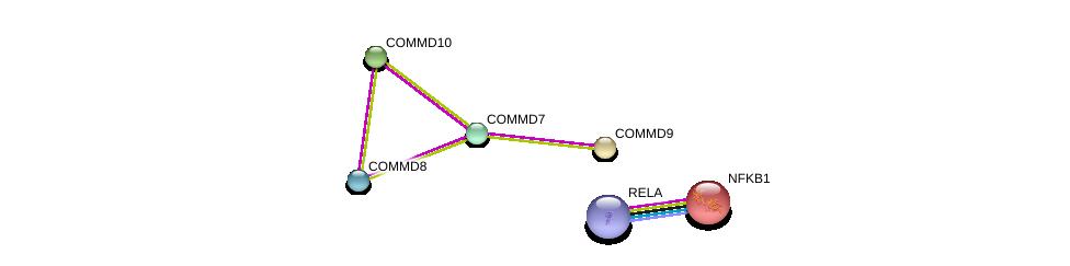 http://string-db.org/version_10/api/image/networkList?limit=0&targetmode=proteins&caller_identity=gene_cards&network_flavor=evidence&identifiers=9606.ENSP00000278980%0d%0a9606.ENSP00000370984%0d%0a9606.ENSP00000274458%0d%0a9606.ENSP00000263401%0d%0a9606.ENSP00000384273%0d%0a9606.ENSP00000226574%0d%0a