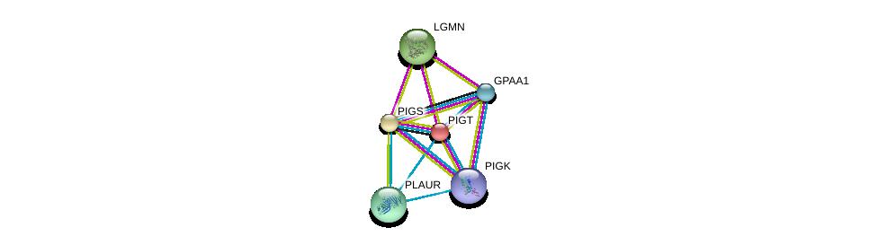 http://string-db.org/version_10/api/image/networkList?limit=0&targetmode=proteins&caller_identity=gene_cards&network_flavor=evidence&identifiers=9606.ENSP00000279036%0d%0a9606.ENSP00000309430%0d%0a9606.ENSP00000359848%0d%0a9606.ENSP00000347206%0d%0a9606.ENSP00000339328%0d%0a9606.ENSP00000334052%0d%0a