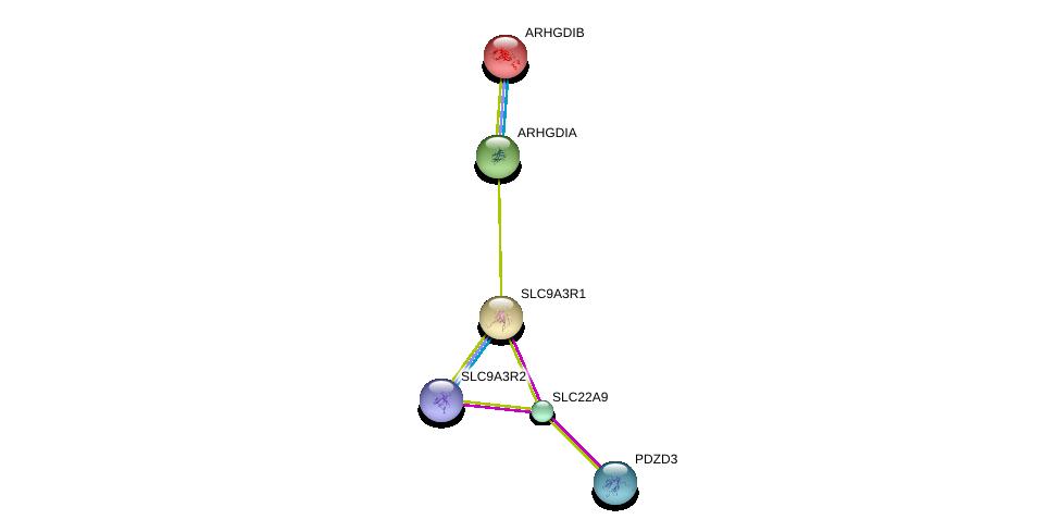 http://string-db.org/version_10/api/image/networkList?limit=0&targetmode=proteins&caller_identity=gene_cards&network_flavor=evidence&identifiers=9606.ENSP00000279178%0d%0a9606.ENSP00000347742%0d%0a9606.ENSP00000262613%0d%0a9606.ENSP00000408005%0d%0a9606.ENSP00000269321%0d%0a9606.ENSP00000228945%0d%0a