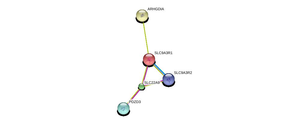 http://string-db.org/version_10/api/image/networkList?limit=0&targetmode=proteins&caller_identity=gene_cards&network_flavor=evidence&identifiers=9606.ENSP00000279178%0d%0a9606.ENSP00000347742%0d%0a9606.ENSP00000408005%0d%0a9606.ENSP00000262613%0d%0a9606.ENSP00000262613%0d%0a9606.ENSP00000269321%0d%0a