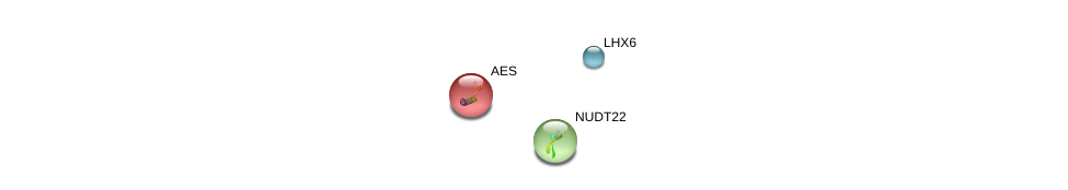 http://string-db.org/version_10/api/image/networkList?limit=0&targetmode=proteins&caller_identity=gene_cards&network_flavor=evidence&identifiers=9606.ENSP00000279206%0d%0a9606.ENSP00000377854%0d%0a9606.ENSP00000221561%0d%0a
