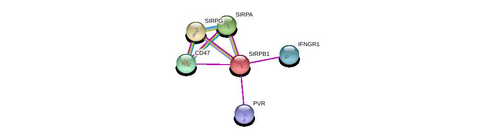 http://string-db.org/version_10/api/image/networkList?limit=0&targetmode=proteins&caller_identity=gene_cards&network_flavor=evidence&identifiers=9606.ENSP00000279477%0d%0a9606.ENSP00000305529%0d%0a9606.ENSP00000356713%0d%0a9606.ENSP00000355361%0d%0a9606.ENSP00000402060%0d%0a9606.ENSP00000348307%0d%0a