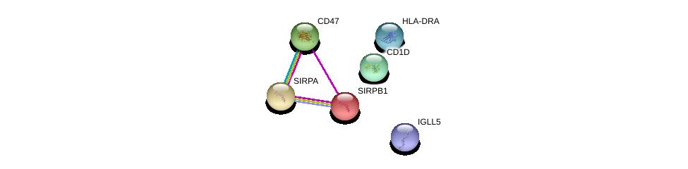 http://string-db.org/version_10/api/image/networkList?limit=0&targetmode=proteins&caller_identity=gene_cards&network_flavor=evidence&identifiers=9606.ENSP00000279477%0d%0a9606.ENSP00000348307%0d%0a9606.ENSP00000355361%0d%0a9606.ENSP00000378786%0d%0a9606.ENSP00000431254%0d%0a9606.ENSP00000357153%0d%0a