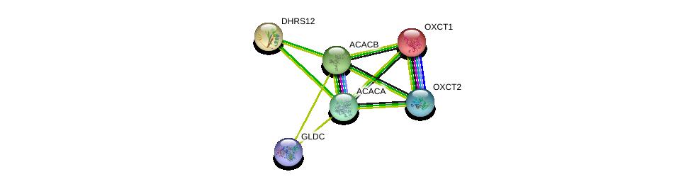 http://string-db.org/version_10/api/image/networkList?limit=0&targetmode=proteins&caller_identity=gene_cards&network_flavor=evidence&identifiers=9606.ENSP00000280056%0d%0a9606.ENSP00000361914%0d%0a9606.ENSP00000196371%0d%0a9606.ENSP00000370737%0d%0a9606.ENSP00000341044%0d%0a9606.ENSP00000344789%0d%0a