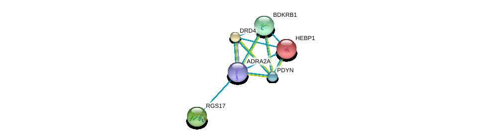 http://string-db.org/version_10/api/image/networkList?limit=0&targetmode=proteins&caller_identity=gene_cards&network_flavor=evidence&identifiers=9606.ENSP00000280155%0d%0a9606.ENSP00000014930%0d%0a9606.ENSP00000176183%0d%0a9606.ENSP00000206262%0d%0a9606.ENSP00000216629%0d%0a9606.ENSP00000217305%0d%0a
