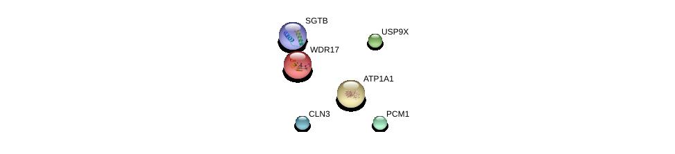 http://string-db.org/version_10/api/image/networkList?limit=0&targetmode=proteins&caller_identity=gene_cards&network_flavor=evidence&identifiers=9606.ENSP00000280190%0d%0a9606.ENSP00000353073%0d%0a9606.ENSP00000327077%0d%0a9606.ENSP00000316357%0d%0a9606.ENSP00000370395%0d%0a9606.ENSP00000295598%0d%0a
