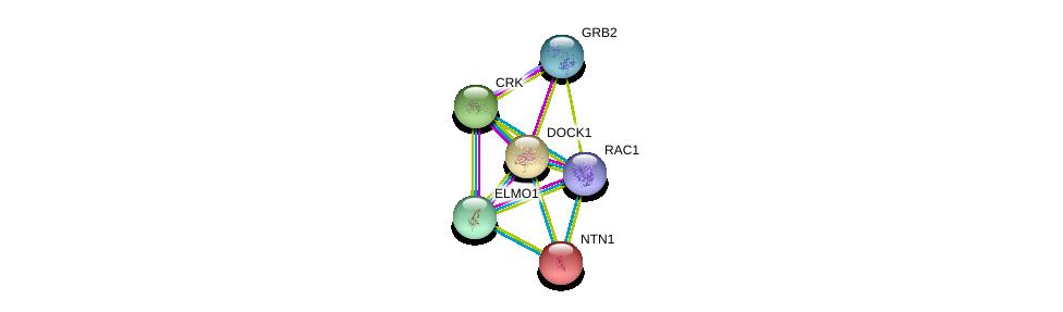 http://string-db.org/version_10/api/image/networkList?limit=0&targetmode=proteins&caller_identity=gene_cards&network_flavor=evidence&identifiers=9606.ENSP00000280333%0d%0a9606.ENSP00000300574%0d%0a9606.ENSP00000312185%0d%0a9606.ENSP00000348461%0d%0a9606.ENSP00000339007%0d%0a9606.ENSP00000173229%0d%0a