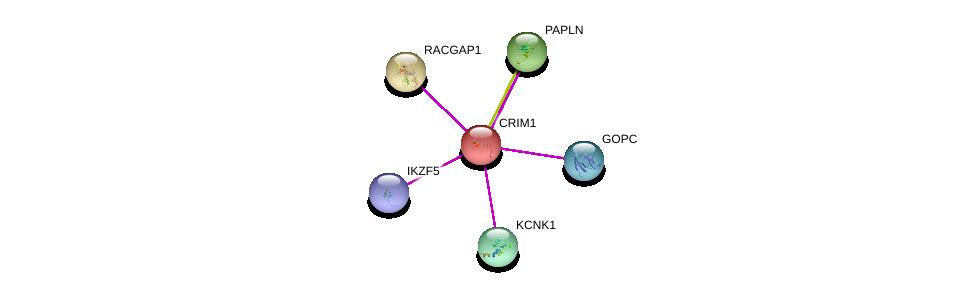 http://string-db.org/version_10/api/image/networkList?limit=0&targetmode=proteins&caller_identity=gene_cards&network_flavor=evidence&identifiers=9606.ENSP00000280527%0d%0a9606.ENSP00000357484%0d%0a9606.ENSP00000345395%0d%0a9606.ENSP00000309871%0d%0a9606.ENSP00000357881%0d%0a9606.ENSP00000355580%0d%0a