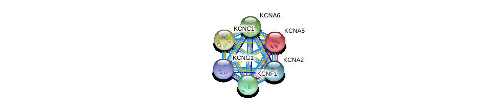 http://string-db.org/version_10/api/image/networkList?limit=0&targetmode=proteins&caller_identity=gene_cards&network_flavor=evidence&identifiers=9606.ENSP00000280684%0d%0a9606.ENSP00000314520%0d%0a9606.ENSP00000252321%0d%0a9606.ENSP00000265969%0d%0a9606.ENSP00000360626%0d%0a9606.ENSP00000295082%0d%0a