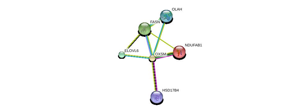 http://string-db.org/version_10/api/image/networkList?limit=0&targetmode=proteins&caller_identity=gene_cards&network_flavor=evidence&identifiers=9606.ENSP00000280701%0d%0a9606.ENSP00000304592%0d%0a9606.ENSP00000367462%0d%0a9606.ENSP00000007516%0d%0a9606.ENSP00000304736%0d%0a9606.ENSP00000420914%0d%0a