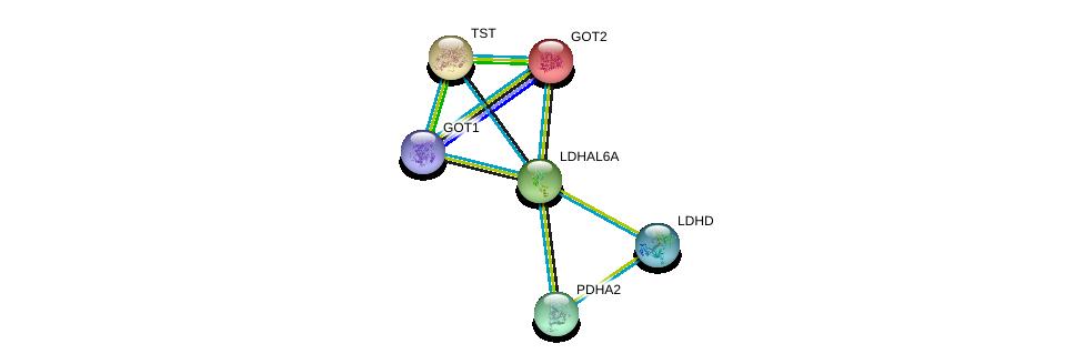 http://string-db.org/version_10/api/image/networkList?limit=0&targetmode=proteins&caller_identity=gene_cards&network_flavor=evidence&identifiers=9606.ENSP00000280706%0d%0a9606.ENSP00000245206%0d%0a9606.ENSP00000249042%0d%0a9606.ENSP00000295266%0d%0a9606.ENSP00000300051%0d%0a9606.ENSP00000359539%0d%0a