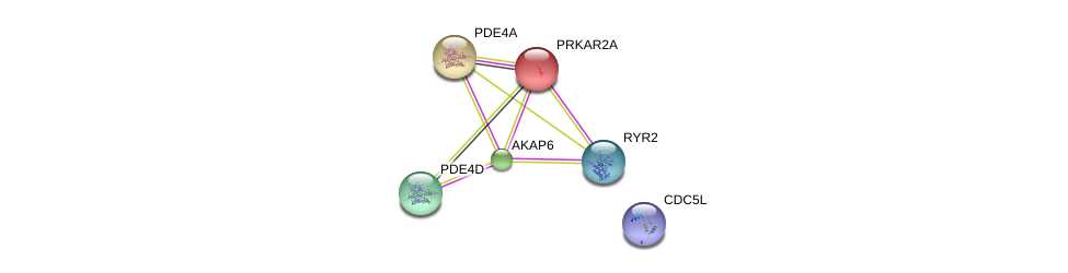 http://string-db.org/version_10/api/image/networkList?limit=0&targetmode=proteins&caller_identity=gene_cards&network_flavor=evidence&identifiers=9606.ENSP00000280979%0d%0a9606.ENSP00000355533%0d%0a9606.ENSP00000265563%0d%0a9606.ENSP00000345502%0d%0a9606.ENSP00000270474%0d%0a9606.ENSP00000360532%0d%0a